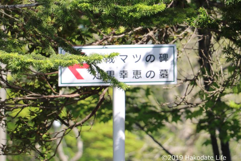 近くには金成マツ氏の碑や知里幸恵氏の墓があります
