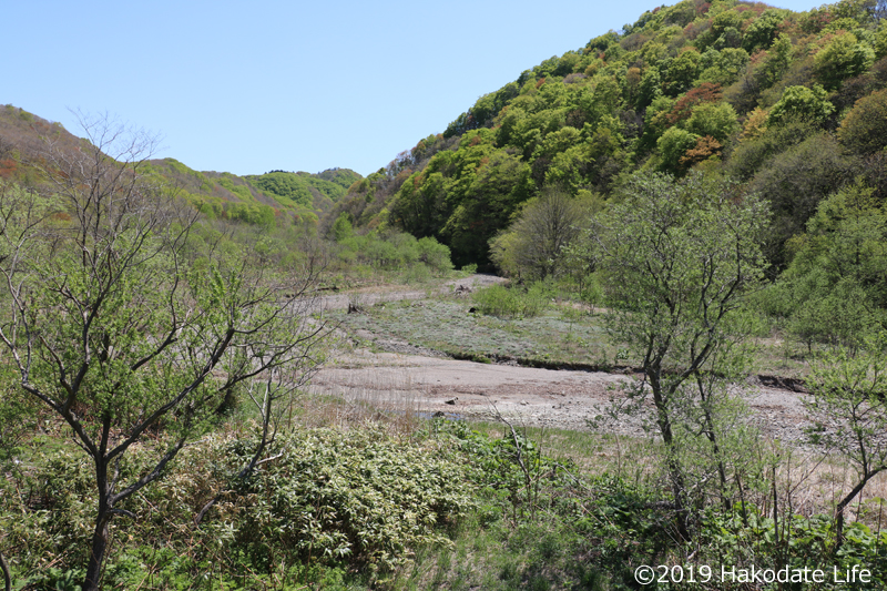 古佐内川の流れ