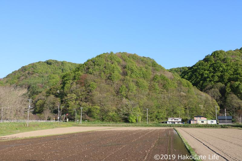 安野呂方面からの太鼓山