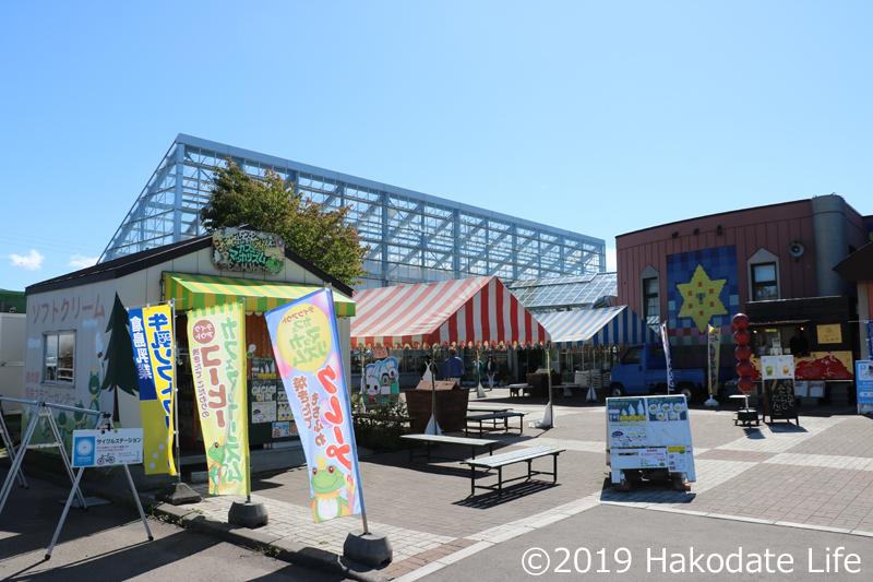 夏場はテイクアウトの食べ物屋が並ぶ、奥が植物のあるガラスの建物