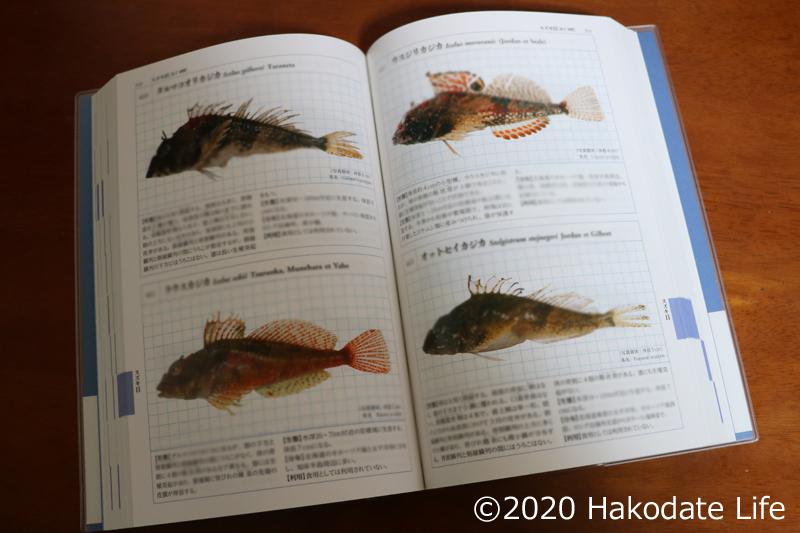 『北海道の魚類 全種図鑑』の中身