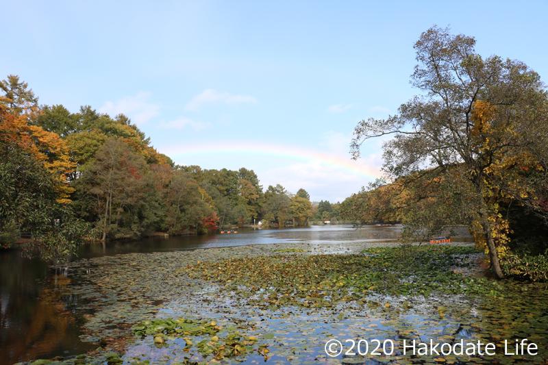 虹と八郎沼公園