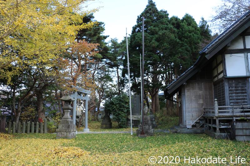 イチョウの葉に埋もれる住三吉神社