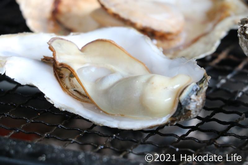 プリプリの牡蠣